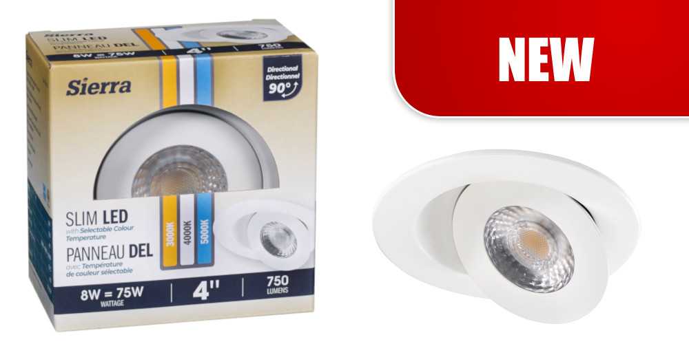 "SLIM 4"" DIRECTIONAL LED RECESSED w/SELECTABLE COLOUR TEMPERATURE"